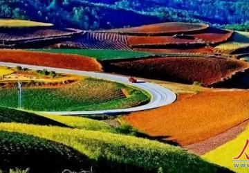 """国家强硬表态:农业要变""""天""""了!"""