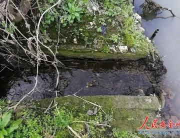 """经过了""""顶格处罚"""",曾经的排污处一年后水清岸绿"""